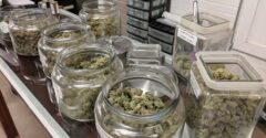 Important things to always consider when you are looking for a weed dispensary