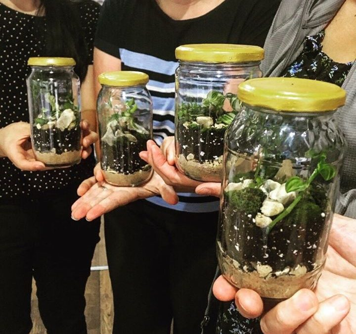 All You Need To Know The Importance Of Terrarium Workshop Singapore